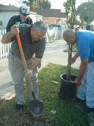 NLB CAG tree planting Oct 11/03