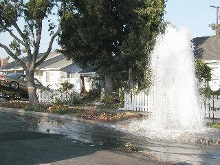 Hydrant, Clark @ Wardlow Oct 5/04