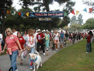 Dog Walk 06
