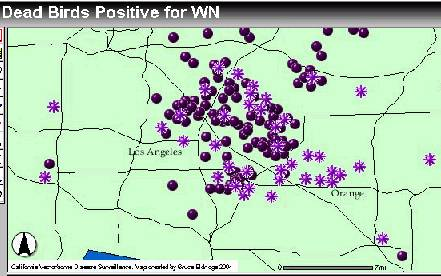 WNV map, 6/25