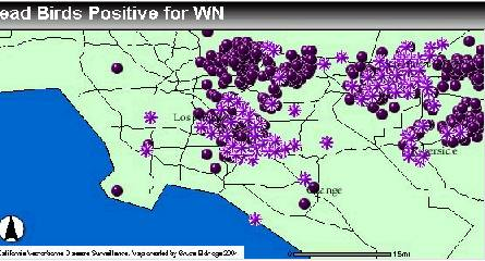 WNV Map 6/25