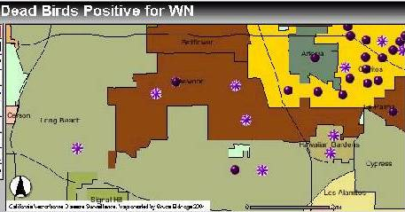 WNV map, 7/2