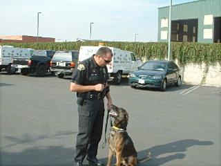 Drago police dog