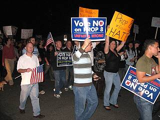 Lejins Prop 8 demonstration Nov. 7/08