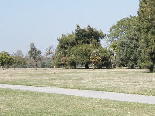 Cantrell park June 1/03