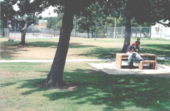 Scherer Park view